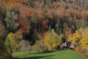 cottage-1030975_1920